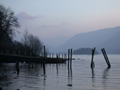 Derwent Evening